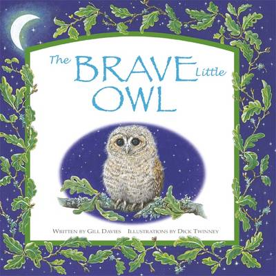 The Brave Little Owl by Gill Davies