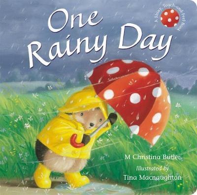One Rainy Day by M. Christina Butler, Tina MacNaughton