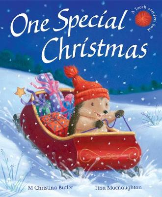 One Special Christmas by M. Christina Butler