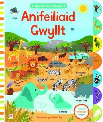 Cyfres Chwilio a Ffeindio: Anifeiliaid Gwyllt by Mared Furnham
