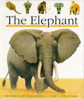 The Elephant by James Prunier