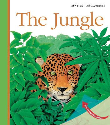 The Jungle by Rene Mettler
