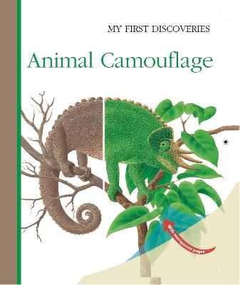 Animal Camouflage by Rene Mettler