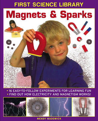 First Science Library: Magnets & Sparks by Wendy Madgwick