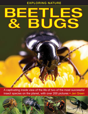 Exploring Nature: Beetles & Bugs by Dr Jen Green