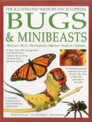 The Illustrated Wildlife Encyclopedia Bugs & Minibeasts by Barbara Taylor, Dr Jen Green, John Farndon