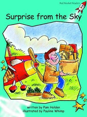 Surprise from the Sky by Pam Holden