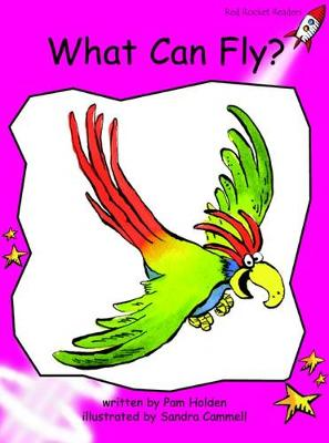 What Can Fly? by Pam Holden