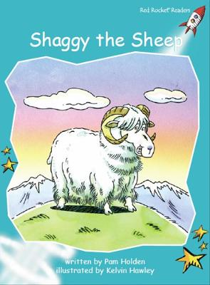 Shaggy the Sheep by Pam Holden