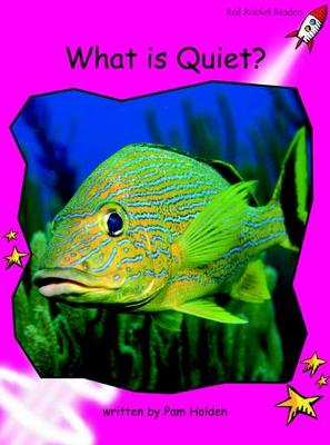 What is Quiet? by Pam Holden