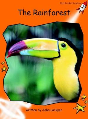 The Rainforest by John Lockyer