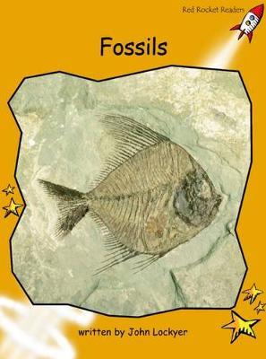 Fossils by John Lockyer
