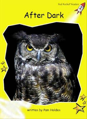 After Dark by Pam Holden