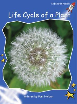 Life Cycle of a Plant by Pam Holden