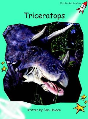 Triceratops by Pam Holden