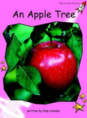 An Apple Tree by Pam Holden