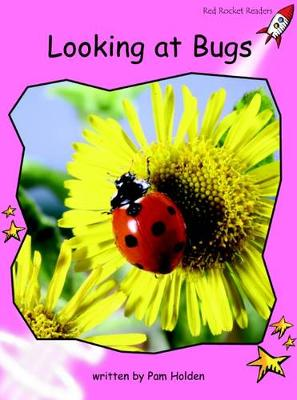 Looking at Bugs by Pam Holden