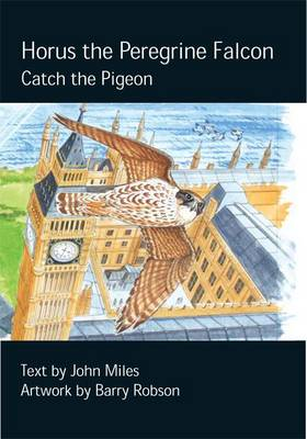 Horus the Peregrine Catch the Pigeon by John Miles