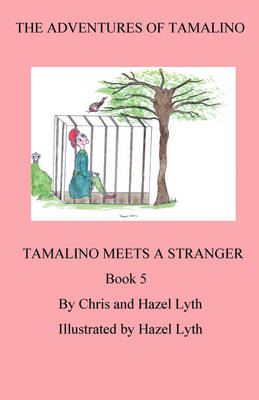 The Adventures of Tamalino Tamalino Meets a Stranger by Christopher Lyth, Hazel Lyth