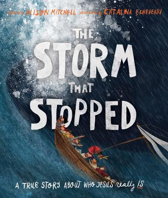 The Storm That Stopped by Alison Mitchell
