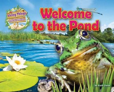 Welcome to the Pond by