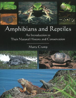 Amphibians & Reptiles An Introduction to Their Natural History & Conservation by Marty Crump