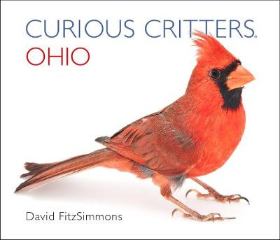 Curious Critters Ohio by David Fitzsimmons