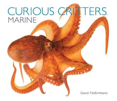 Curious Critters: Marine by David Fitzsimmons