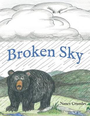 Broken Sky by Nancy Crumley