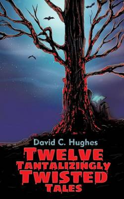 Twelve Tantalizingly Twisted Tales by David C Hughes