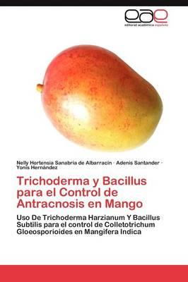 Trichoderma y Bacillus Para El Control de Antracnosis En Mango by Nelly Hortensia Sanabria De Albarrac N