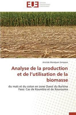 Analyse de La Production Et de L Utilisation de La Biomasse by Sempore-A