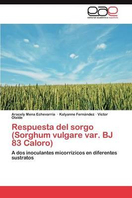 Respuesta del Sorgo (Sorghum Vulgare Var. BJ 83 Caloro) by Mena Echevarria Aracely, Fernandez Kalyanne, Olalde Victor