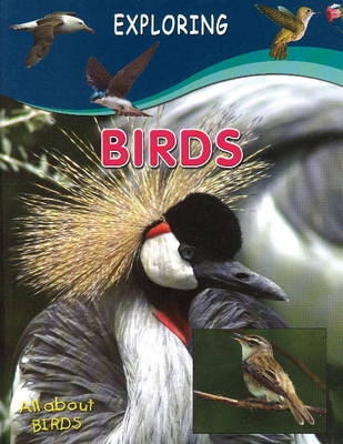 Birds by Sterling Publishers