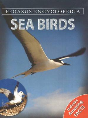 Sea Birds by Pegasus