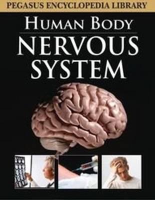Nervous System by Pegasus