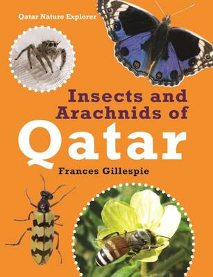 Insects and Arachnids of Qatar by Frances Gillespie