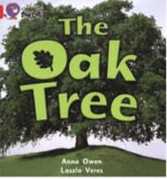 The Oak Tree Band 02B/Red B by Anna Owen