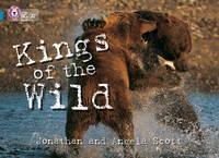 Collins Big Cat: Kings of the Wild: Band 13/Topaz by Jonathan Scott, Angela Scott