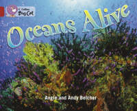 Collins Big Cat Oceans Alive: Band 14/Ruby by Angie Belcher