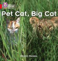Pet Cat, Big Cat Red A/Band 02a Band 02a/Red A by Alison Hawes