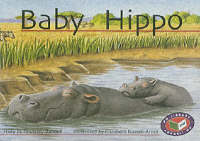 Baby Hippo PM Yellow Set 1 (x6) by Beverley Randell