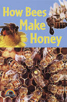 How Bees Make Honey by Helena Ramsey