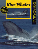 Blue Whales by Patricia Miller-Schroeder