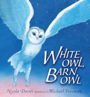 White Owl, Barn Owl Pbk With Cd by Nicola Davies