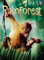 Rainforest by Catriona Clarke