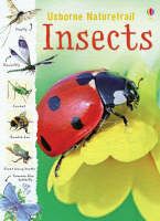 Insects by Rachel Firth
