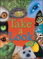 Take a Look Cougar by Sasha Charles, Lucy Blake, Kuljit Kaur, Erin Hanifin