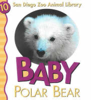 Baby Polar Bear by Julie D. Shively