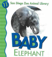 Baby Elephant by Julie D. Shively